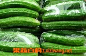 小乳瓜的吃法 小乳瓜的腌制方法